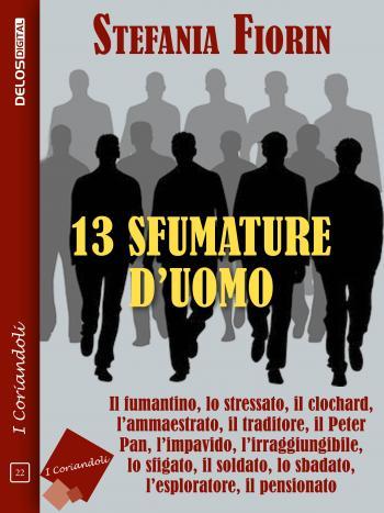 13 sfumature d'uomo (copertina)