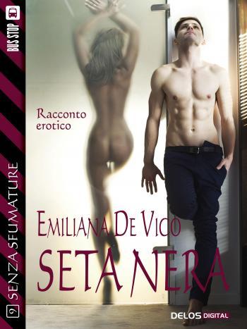 Seta nera (copertina)