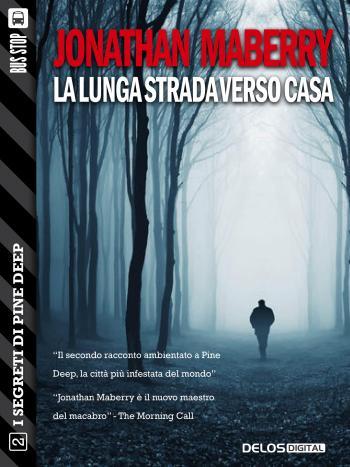 La lunga strada verso casa (copertina)